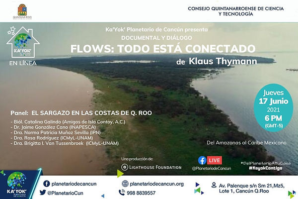 Flows 17Jun2021 (3).jpg