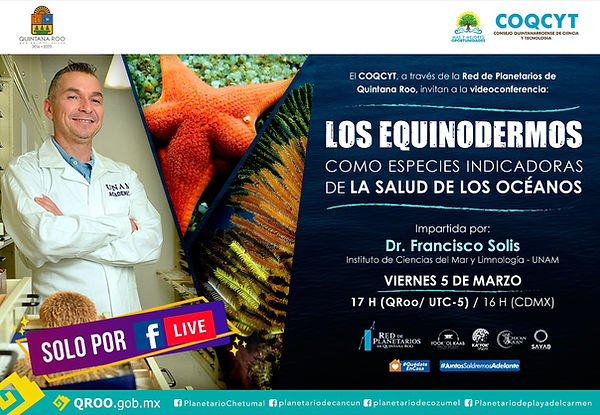 Equinodermos Francisco Solís  5Marzo2021