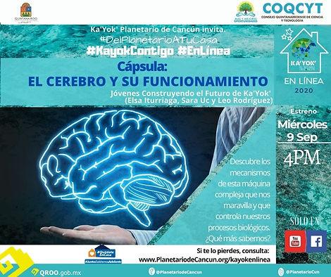 DPATC Cerebro JCF 9Sep2020.jpg