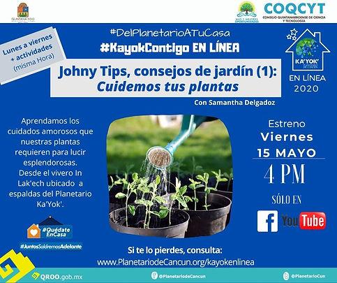 DPATC_Tips_Jardín_15Mayo2020.jpg