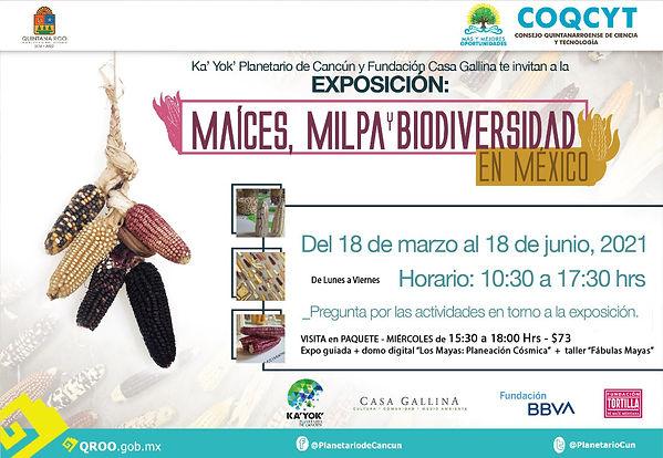 Expo Maices y Paquete Miércoles 18Mzo-18