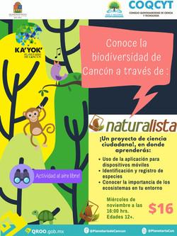 Actividad: Naturalista