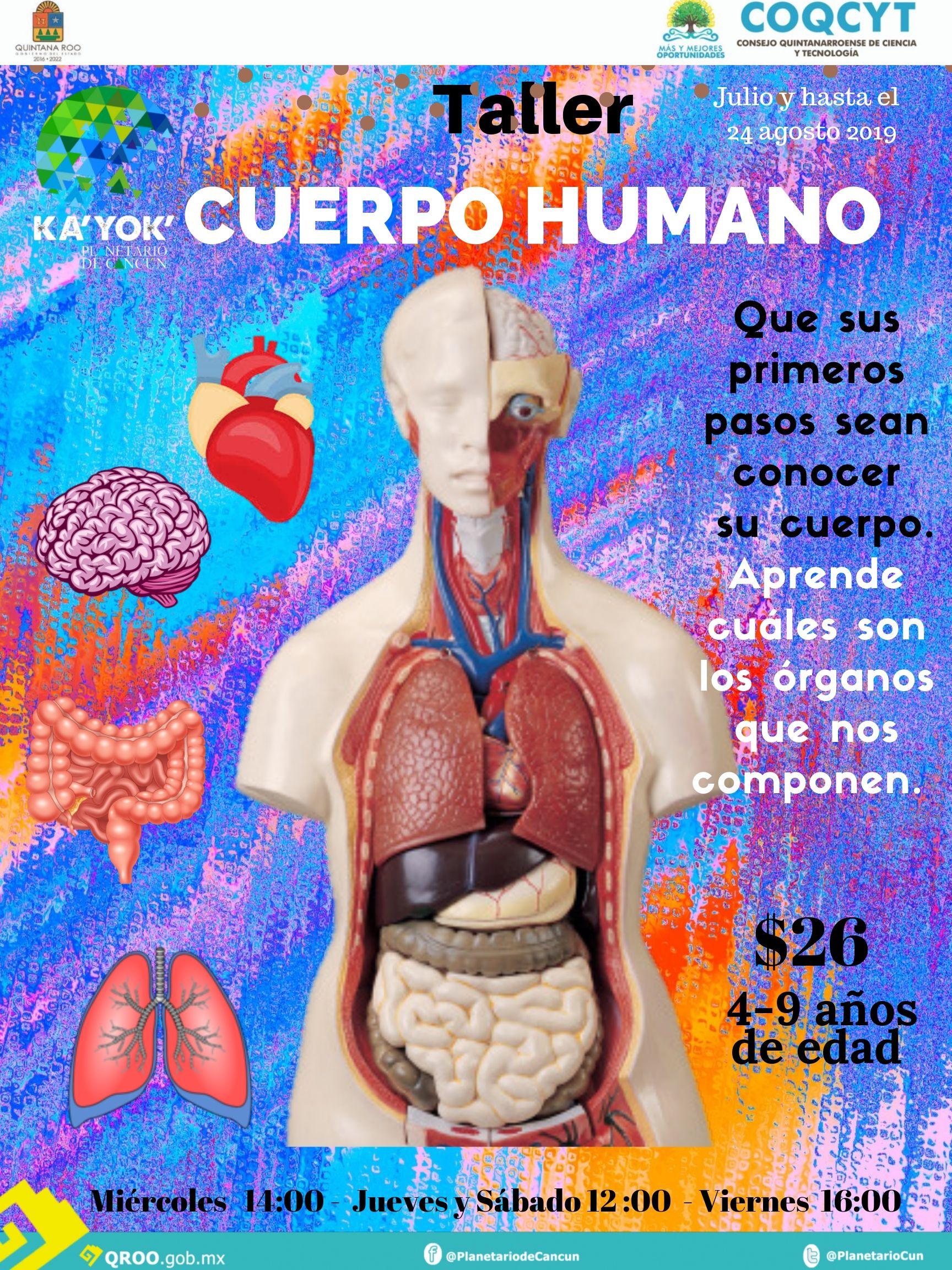 Taller:  Cuerpo Humano