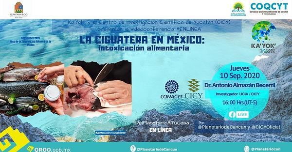 Ciguatera_Alamazán_CICY_10Sep2020-.jpg