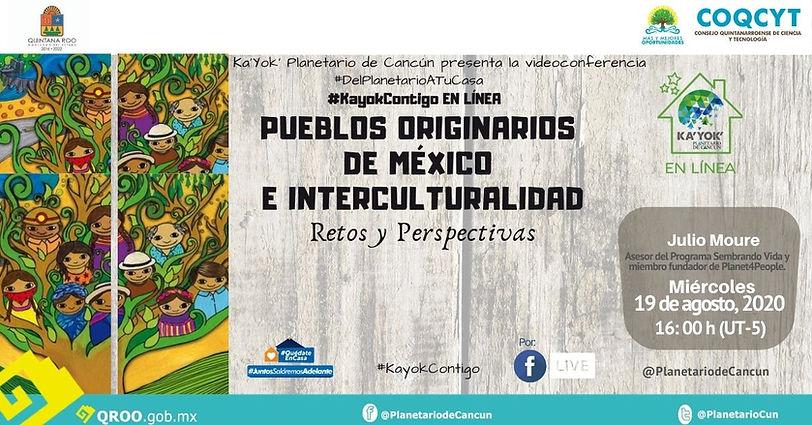 DPATC Pueblos Originarios Julio Moure 19