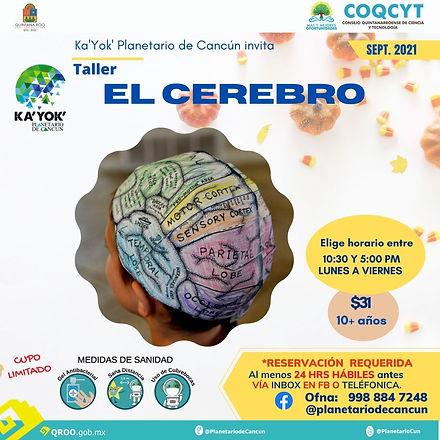 Ese Cerebro Nuestro Sep2021.jpg
