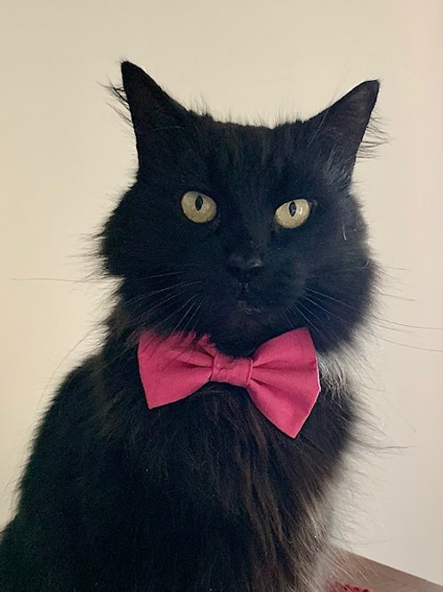Dog and Cat Bow Ties
