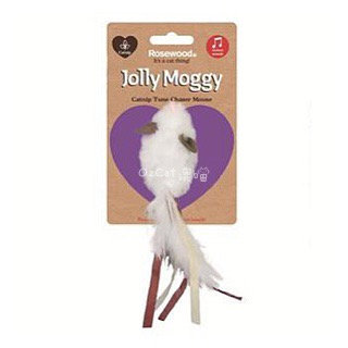 英国Jolly Moggy追逐鼠