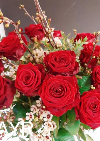 Rote Rosen mit Beiwerk