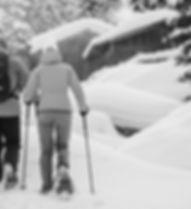 Schneeschuhwandern-SW.jpg