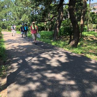 辻堂海浜公園の清掃風景