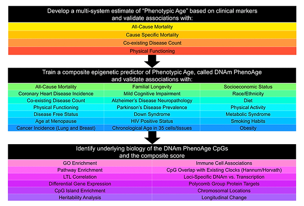 Bio Aging Data.png