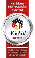 Siegel_DGuSV-small.png