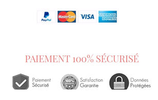 Logos_paiement_securisé_edited.jpg