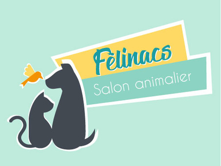 FELINACS SALON ANIMALIER 2020