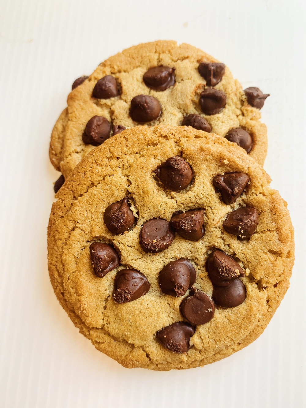 Chocolate Chip Cookies from Memorial Bakery