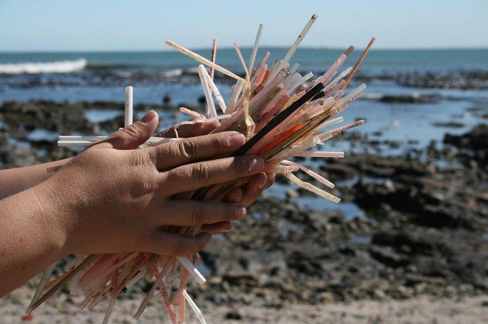 plastic-straws-helen-lockhart-two-oceans