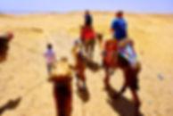 Camel_Desert_Egypt_edited.jpg