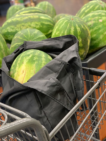 Large Buddy Bag with XL watermelon
