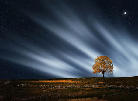 Nous sommes un trait d'union entre le ciel et la terre