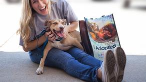 PetSmart Charities Pet Pilot Program is Making a Positive Impact