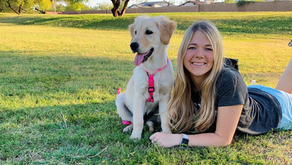 Hear why Audrey, Digital Applications Analyst, has enjoyed #LifeAtPetSmart for 3+ years