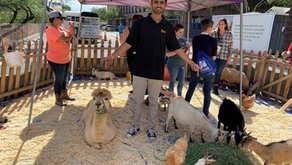 Hear why Kartik, Human Capital Solutions Analyst, has enjoyed #LifeAtPetSmart for 3 years