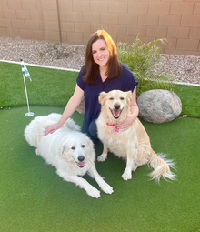 Hear why Julia, Senior Director Human Resources - Offices, has enjoyed #LifeAtPetSmart for 10+ years