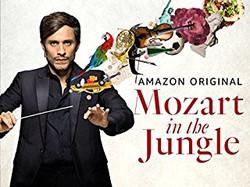 mazart in the jungle