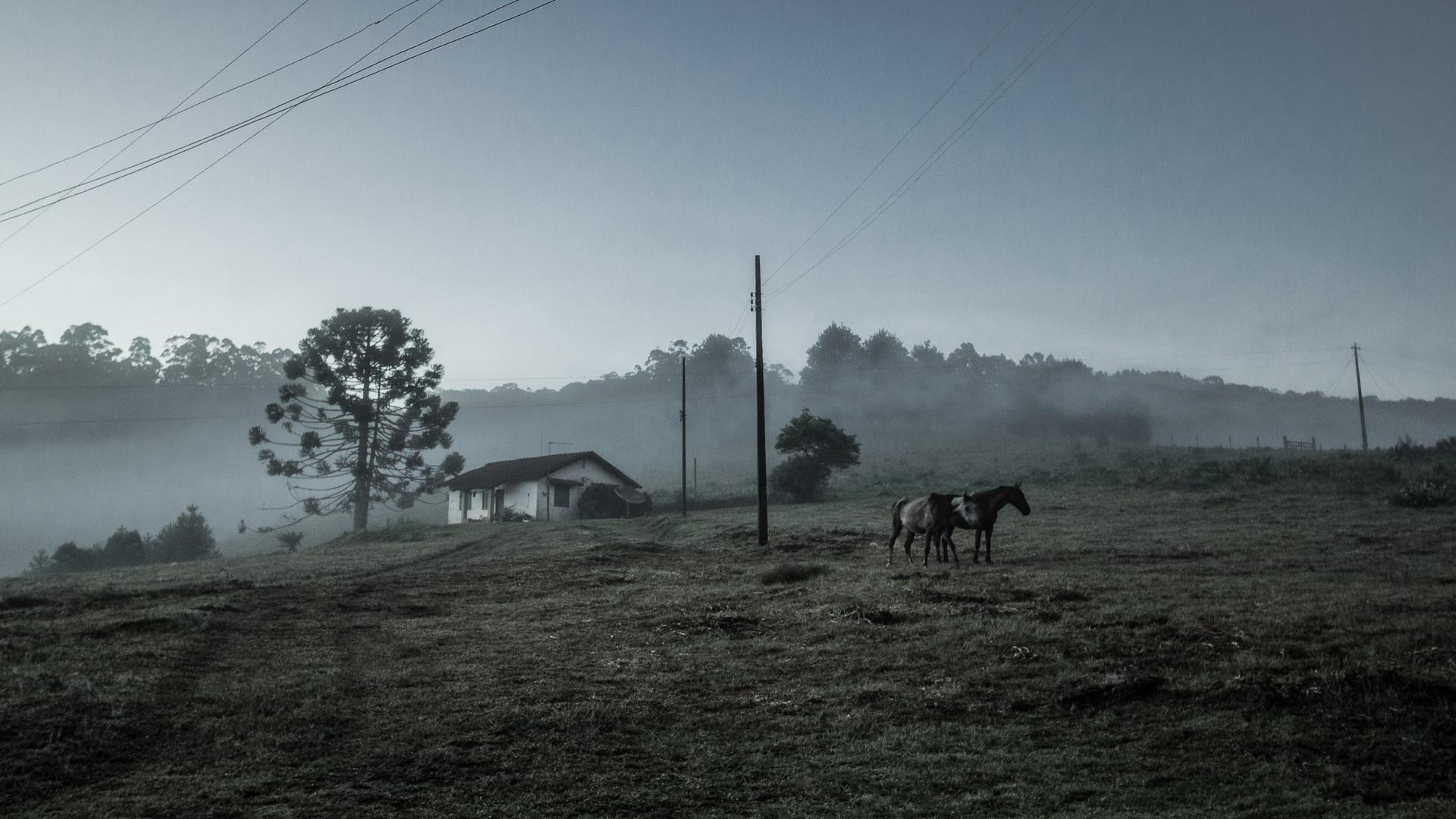 Natália_Viana_Fotografia_-_Terra_Esquecida-3900