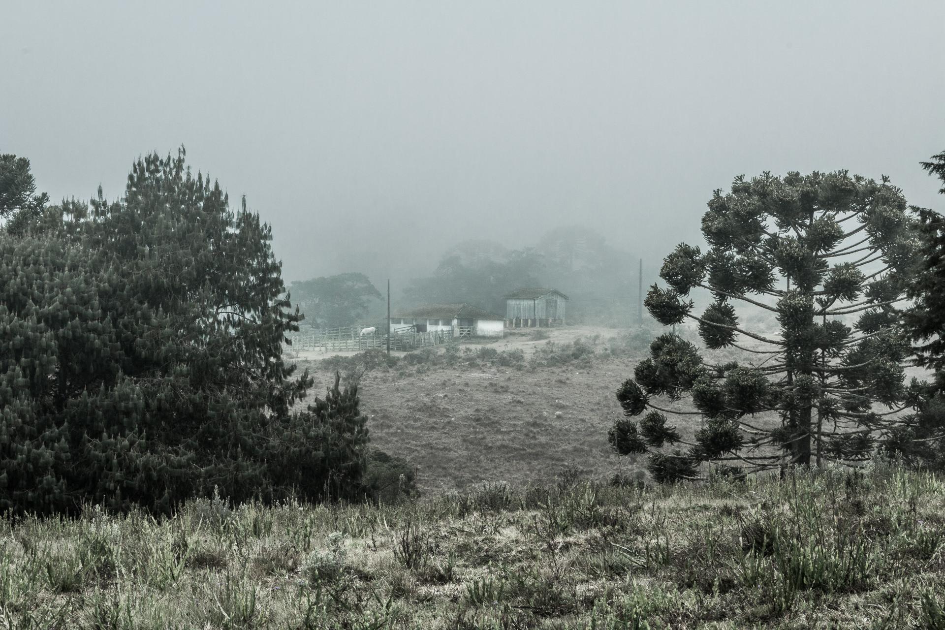 Natália_Viana_Fotografia_-_Terra_Esquecida-0204