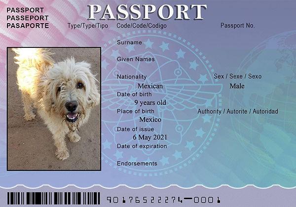 MOM Passport May 2.jpg