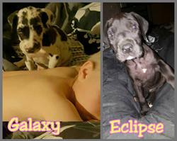 Galaxy & Eclipse