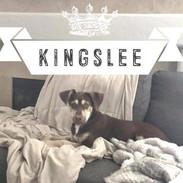 Kingslee