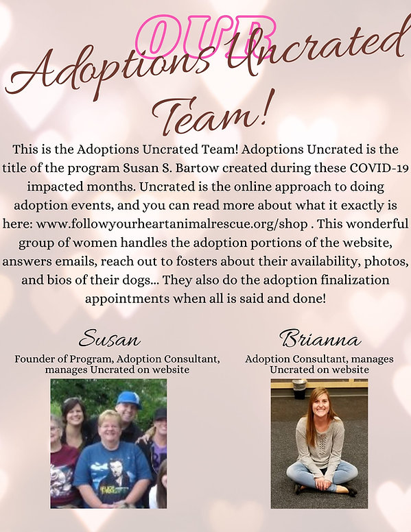 Adoptions Unncrated 2.jpg