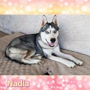 Nadia.jpg