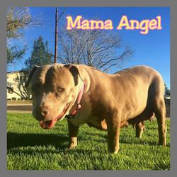 Mama Angel