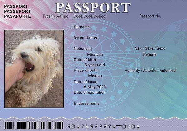MOM Passport May 4.jpg