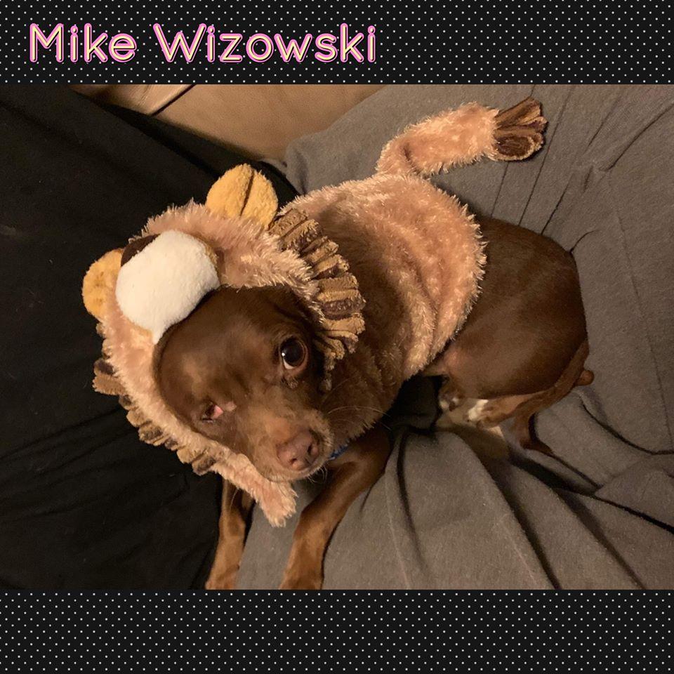 Mik Wizowski