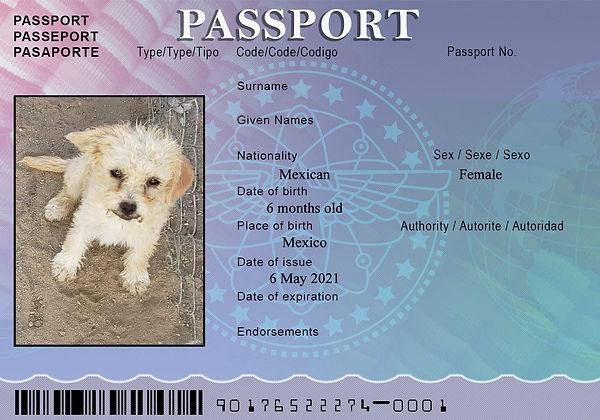 MOM Passport May 5.jpg