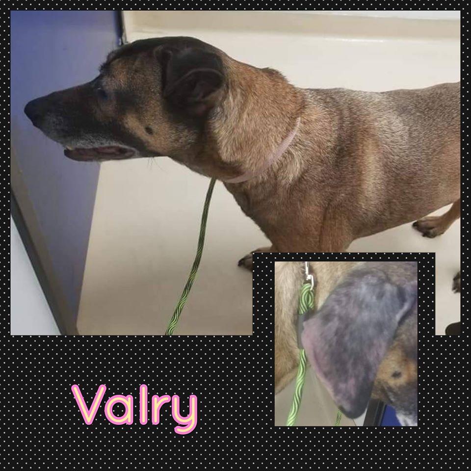 Valry