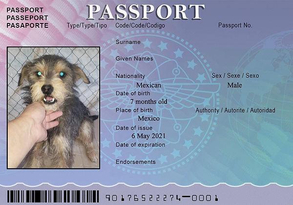 MOM Passport May 3.jpg