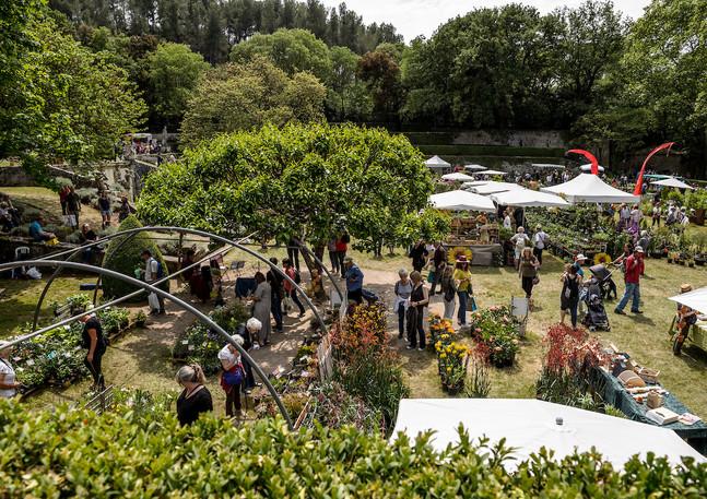 JardinAlbertas2019_031.jpg