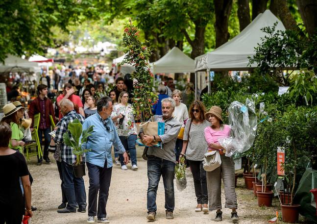 JardinAlbertas2019_030.jpg