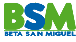 logo-bsm_edited.png