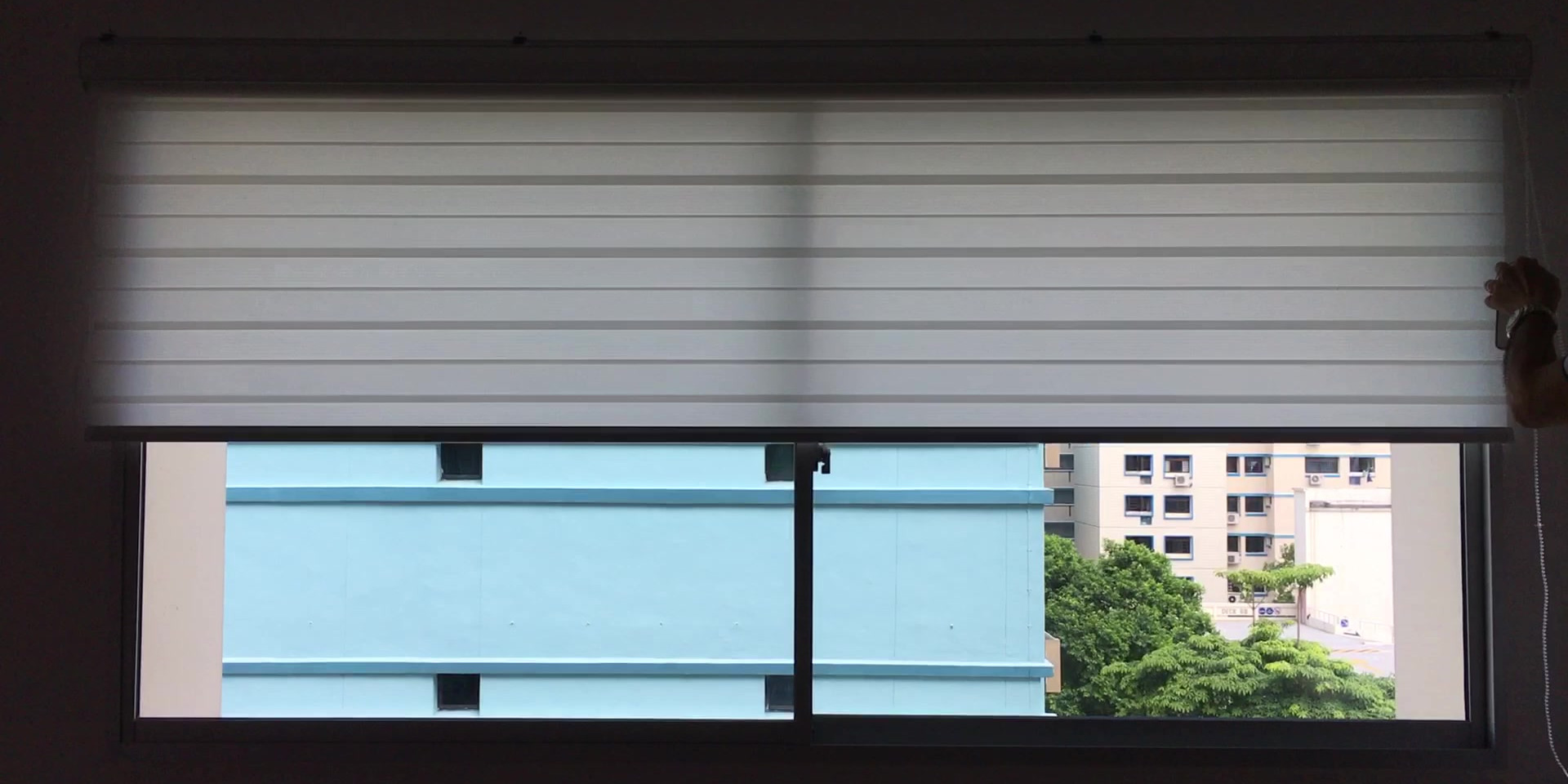 Dual Shade Roller Blinds