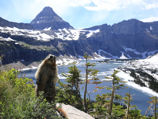 5 Reasons to Visit Glacier National Park