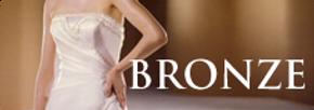 Bronze Orlando Wedding Video price