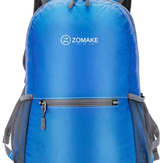 Lightweight Travel Backpack.png