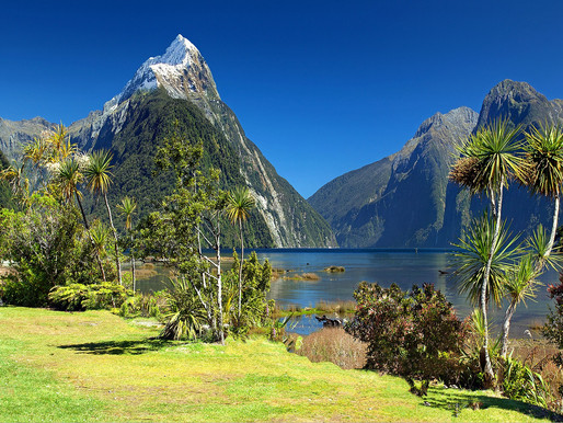 A custom travel itinerary for the South Island of New Zealand